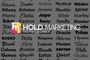 Web Design | Hold Marketing | Fonturi